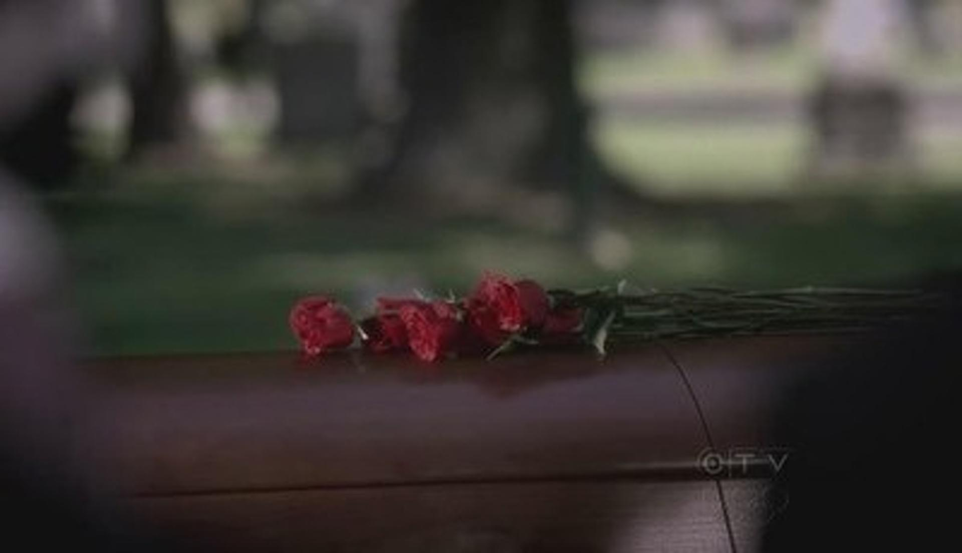 Good Mourning (1) Summary - Greys Anatomy Season 6, Episode 1 ...