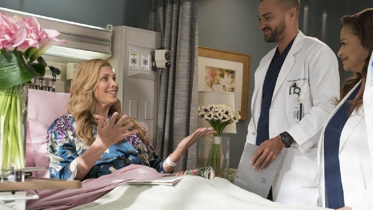 Caught Somewhere in Time Summary - Greys Anatomy Season 14, Episode ...