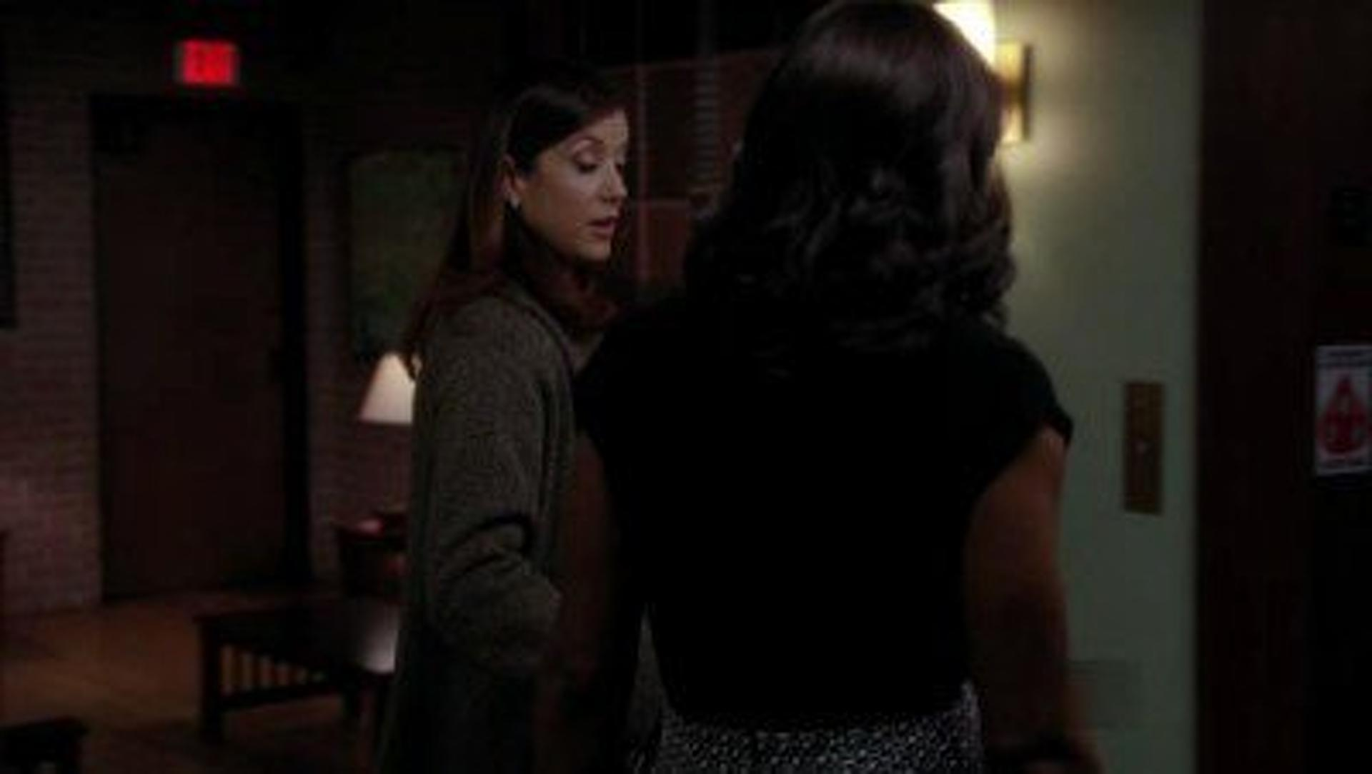 Love And Lies Summary - Private Practice Season 4, Episode 16 ...