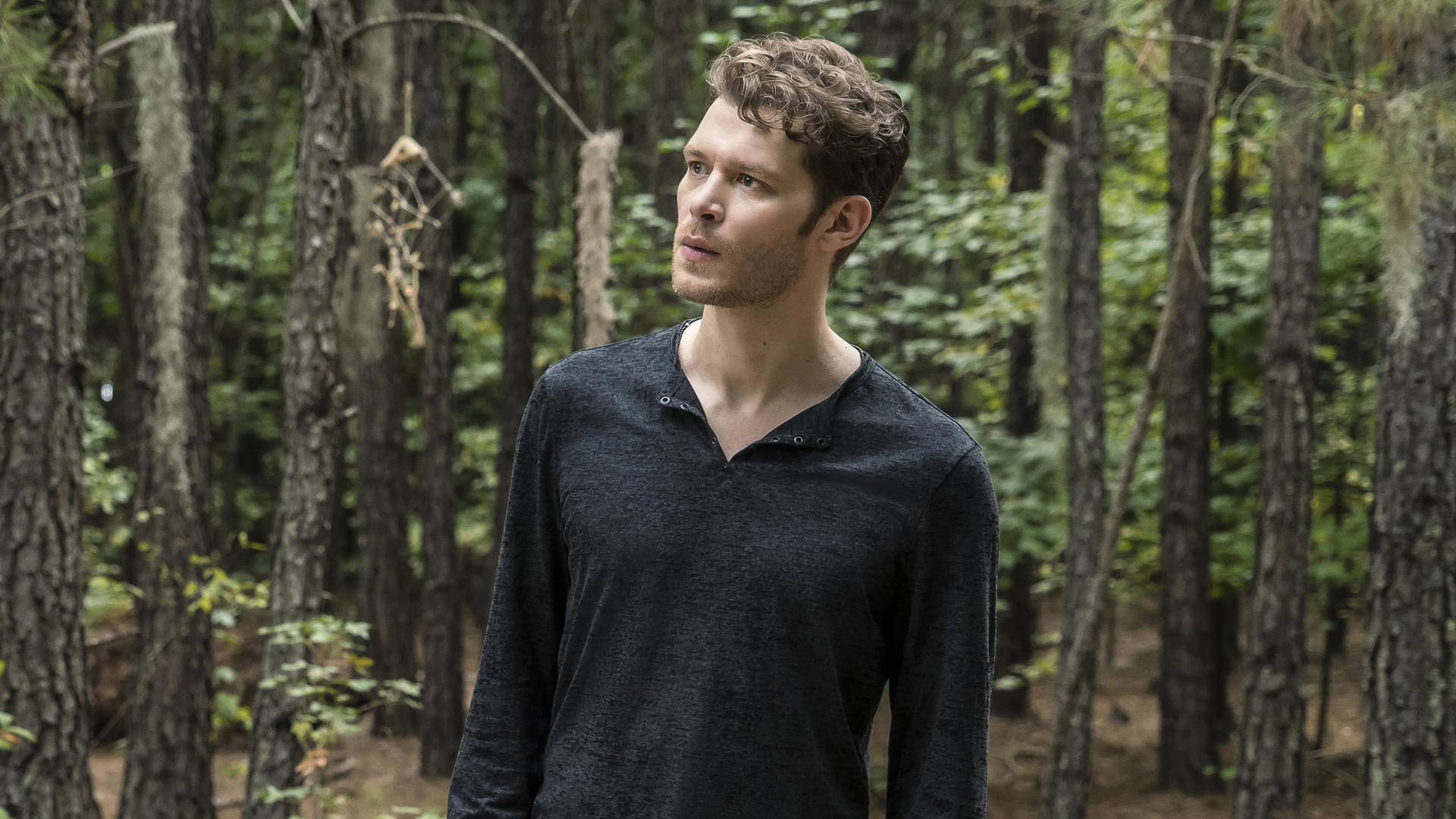 The Originals (S04E01): Gather Up The Killers Summary - Season 4