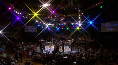The Ultimate Fighter 16 Team Carwin vs. Team Nelson Live Finale